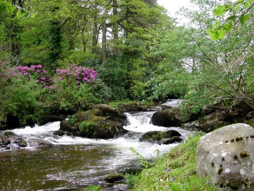 Badgeworthy Water Exmoor