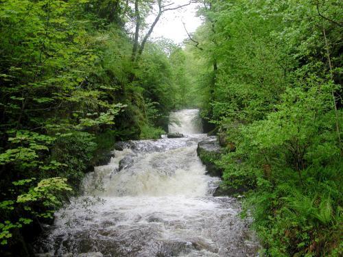 Hoar Oak Falls Watersmeet