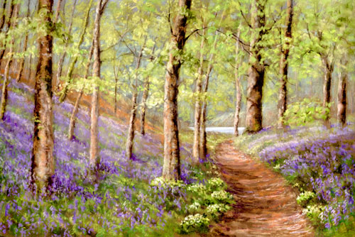 Bluebells and Primroses Along the East Lyn