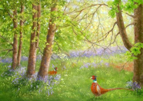 Pheasants at Worfield (Shropshire)