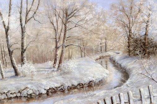 A Winters Tale (Smestow Brook at Wombourne)